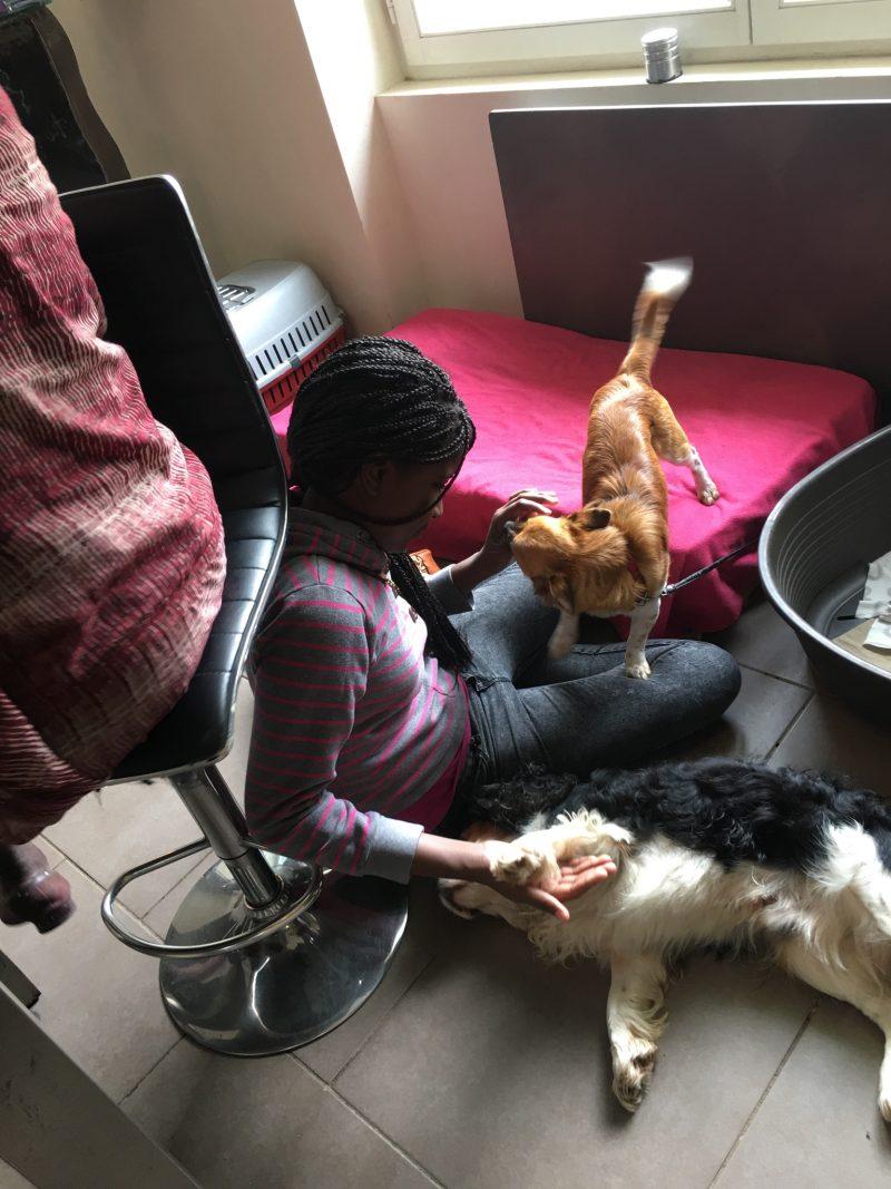 edukachien, aurélie frerou, education canine et comportementalisme canin a domicile, dvpt perso autour de l animal