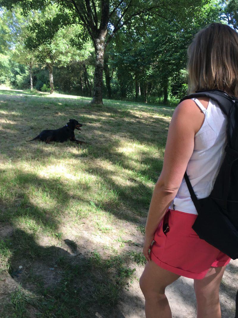 edukachien, aurélie frerou, education canine et comportementalisme canin a domicile, dvpt perso gestion de ses emotions