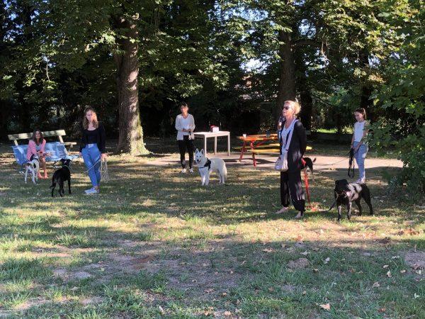 edukachien, aurélie frerou, education canine et comportementalisme canin a domicile, formation pro 2