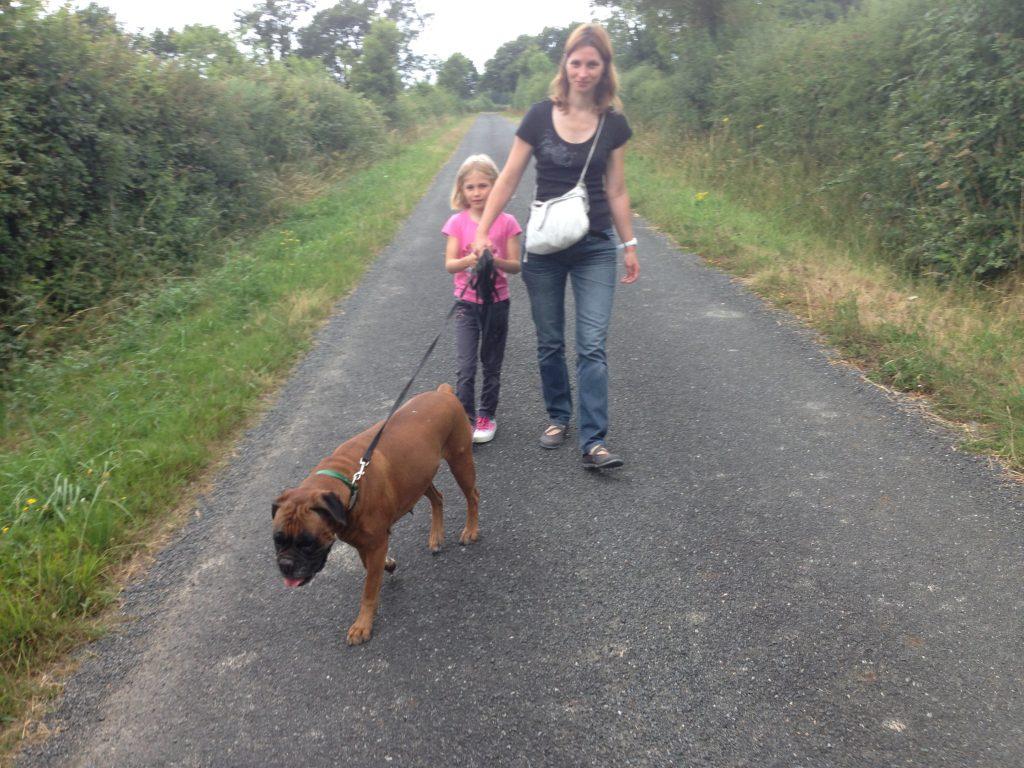 edukachien, aurélie frerou, education canine et comportementalisme canin a domicile, phobie 2