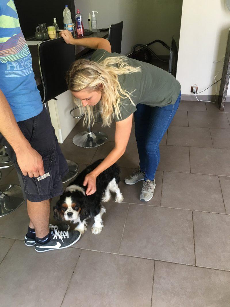 edukachien, aurelie frerou, education canine et comportementalisme canin a domicile, phobie 5